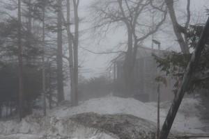 fog201501